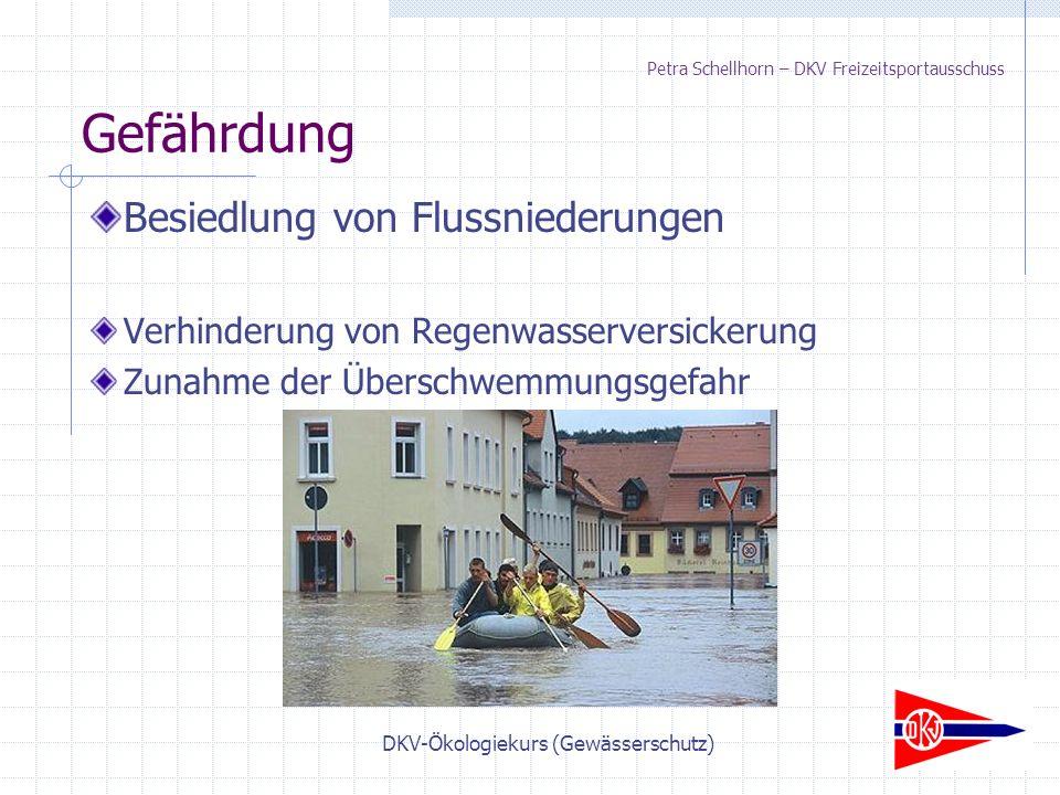 DKV-Ökologiekurs (Gewässerschutz) Petra Schellhorn – DKV Freizeitsportausschuss Besiedlung von Flussniederungen Verhinderung von Regenwasserversickerung Zunahme der Überschwemmungsgefahr Gefährdung
