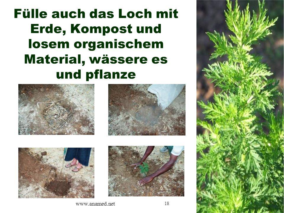 18 Fülle auch das Loch mit Erde, Kompost und losem organischem Material, wässere es und pflanze www.anamed.net