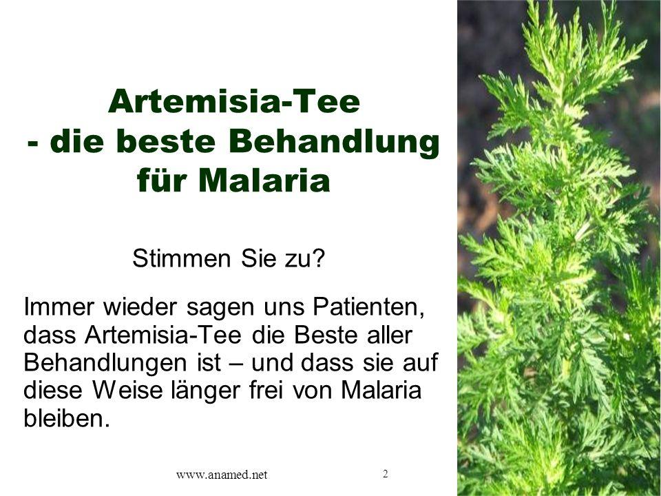 2 Artemisia-Tee - die beste Behandlung für Malaria Stimmen Sie zu.