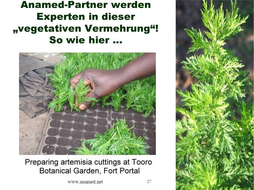 "27 Anamed-Partner werden Experten in dieser ""vegetativen Vermehrung""! So wie hier … www.anamed.net"