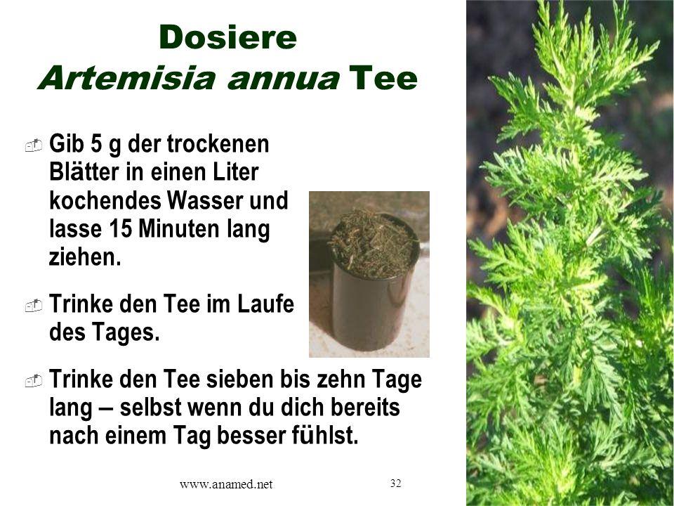 32 Dosiere Artemisia annua Tee  Gib 5 g der trockenen Bl ä tter in einen Liter kochendes Wasser und lasse 15 Minuten lang ziehen.  Trinke den Tee im