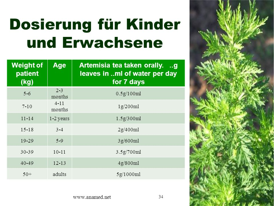 34 Dosierung für Kinder und Erwachsene Weight of patient (kg) AgeArtemisia tea taken orally...g leaves in..ml of water per day for 7 days 5-6 2-3 months 0.5g/100ml 7-10 4-11 months 1g/200ml 11-141-2 years1.5g/300ml 15-183-42g/400ml 19-295-93g/600ml 30-3910-113.5g/700ml 40-4912-134g/800ml 50+adults5g/1000ml www.anamed.net