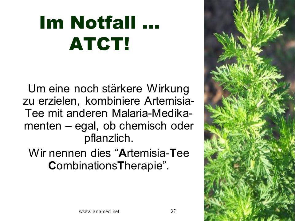37 Im Notfall … ATCT! Um eine noch stärkere Wirkung zu erzielen, kombiniere Artemisia- Tee mit anderen Malaria-Medika- menten – egal, ob chemisch oder