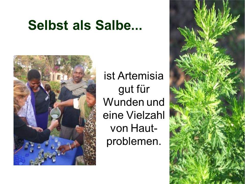 Selbst als Salbe... ist Artemisia gut für Wunden und eine Vielzahl von Haut- problemen.