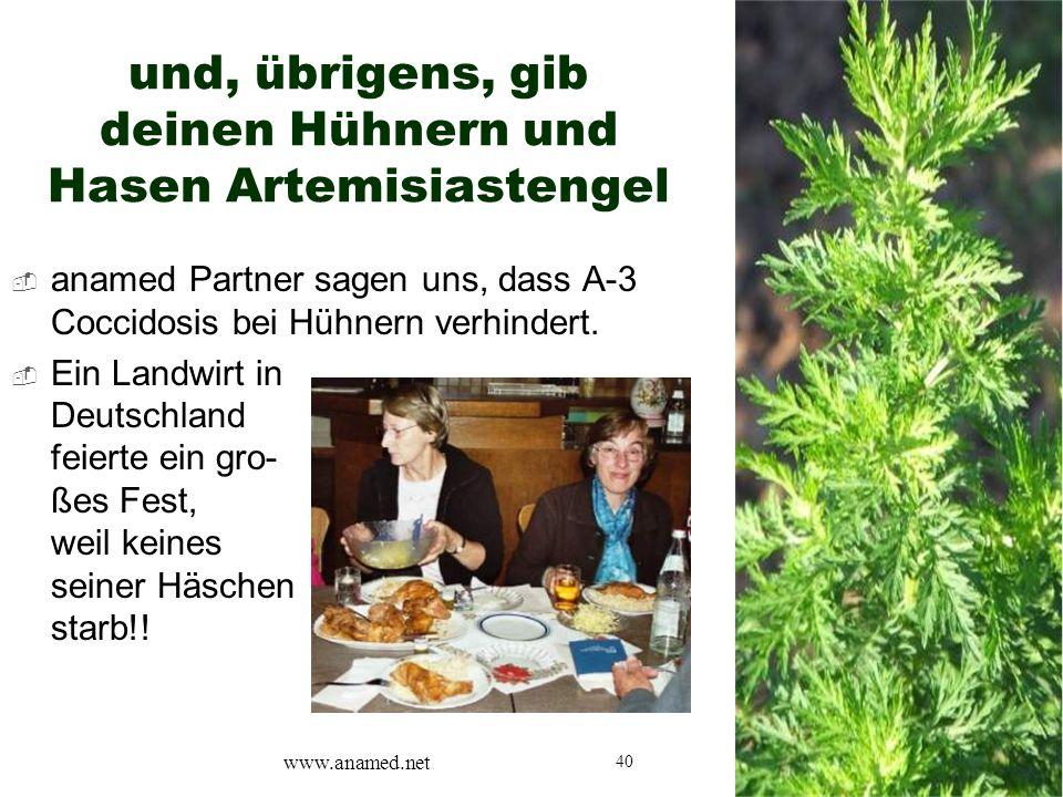 40  anamed Partner sagen uns, dass A-3 Coccidosis bei Hühnern verhindert.  Ein Landwirt in Deutschland feierte ein gro- ßes Fest, weil keines seiner