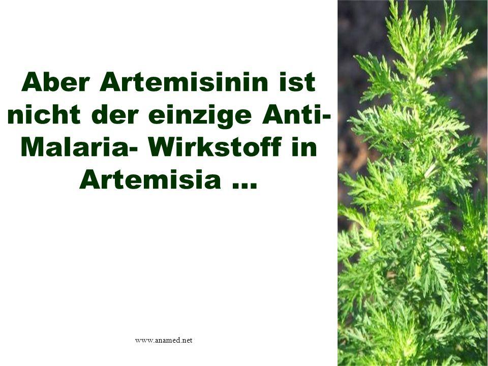 Aber Artemisinin ist nicht der einzige Anti- Malaria- Wirkstoff in Artemisia … www.anamed.net