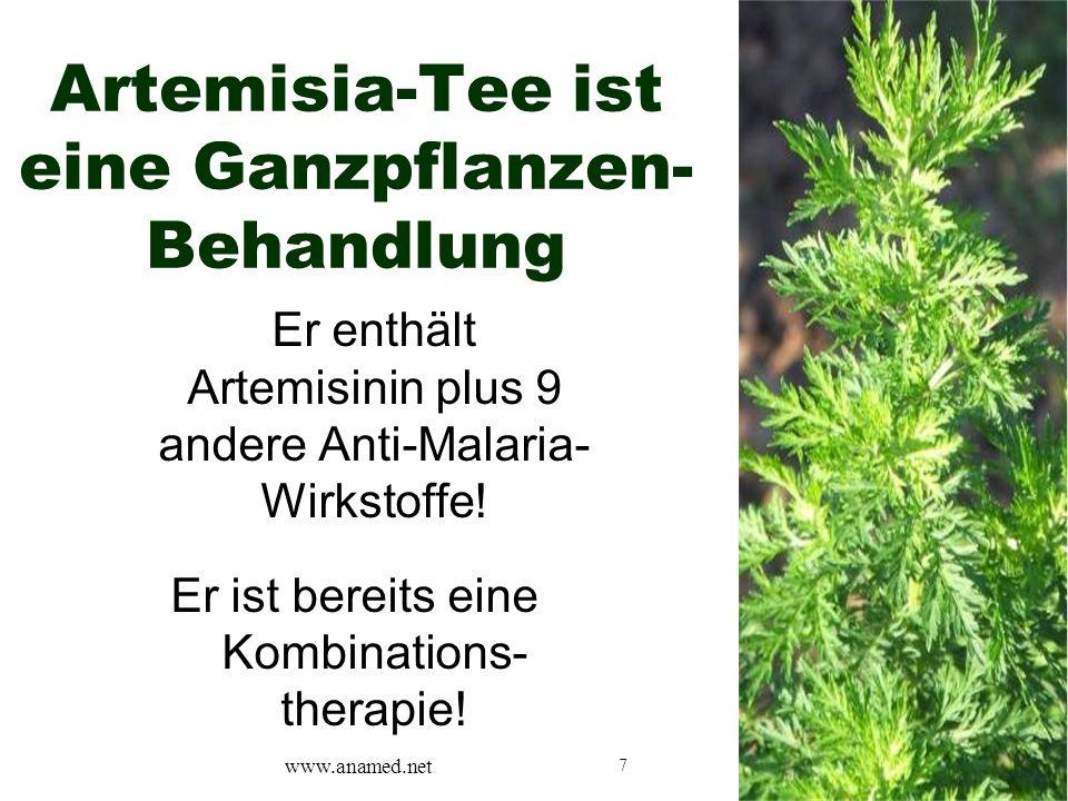 7 Artemisia-Tee ist eine Ganzpflanzen- Behandlung Er enthält Artemisinin plus 9 andere Anti-Malaria- Wirkstoffe.