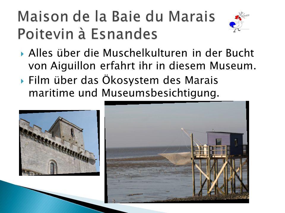  Alles über die Muschelkulturen in der Bucht von Aiguillon erfahrt ihr in diesem Museum.