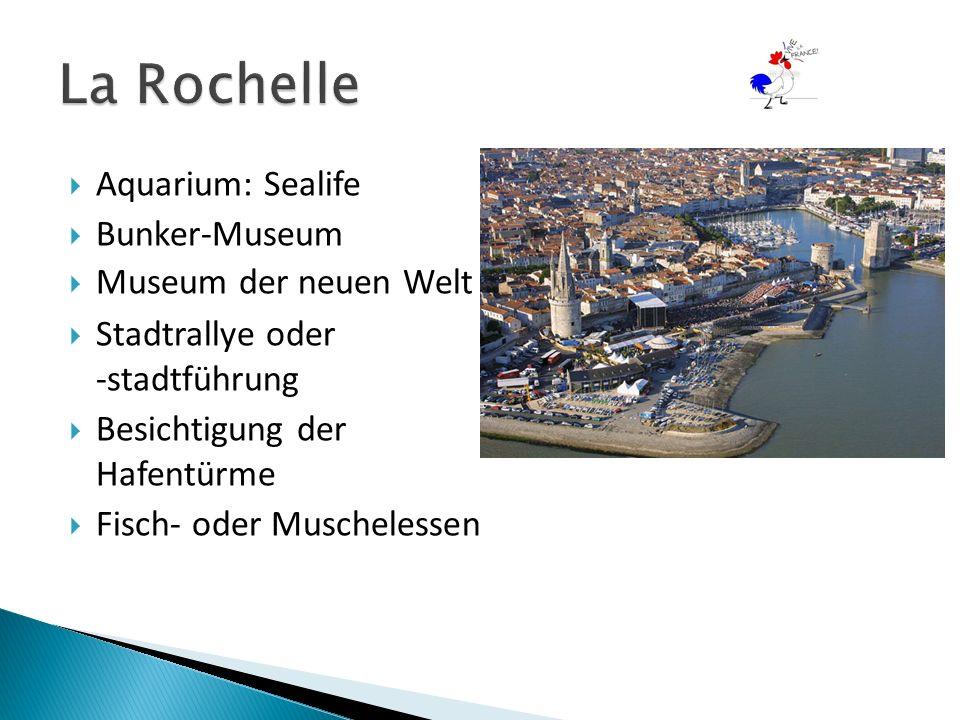  Aquarium: Sealife  Bunker-Museum  Museum der neuen Welt  Stadtrallye oder -stadtführung  Besichtigung der Hafentürme  Fisch- oder Muschelessen