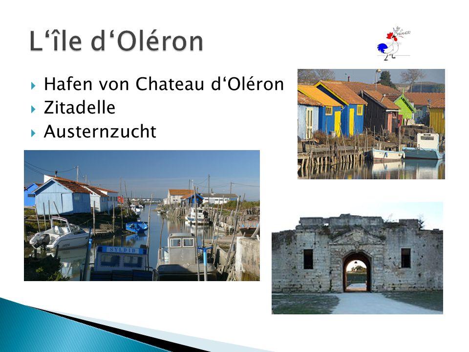  Hafen von Chateau d'Oléron  Zitadelle  Austernzucht