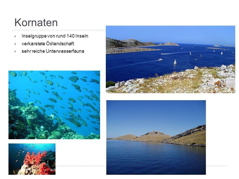 Kornaten  Inselgruppe von rund 140 Inseln  verkarstete Ödlandschaft  sehr reiche Unterwasserfauna