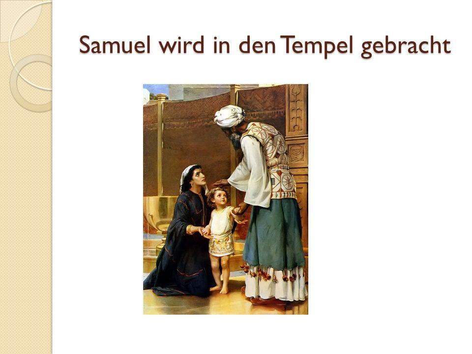 Samuel wird in den Tempel gebracht
