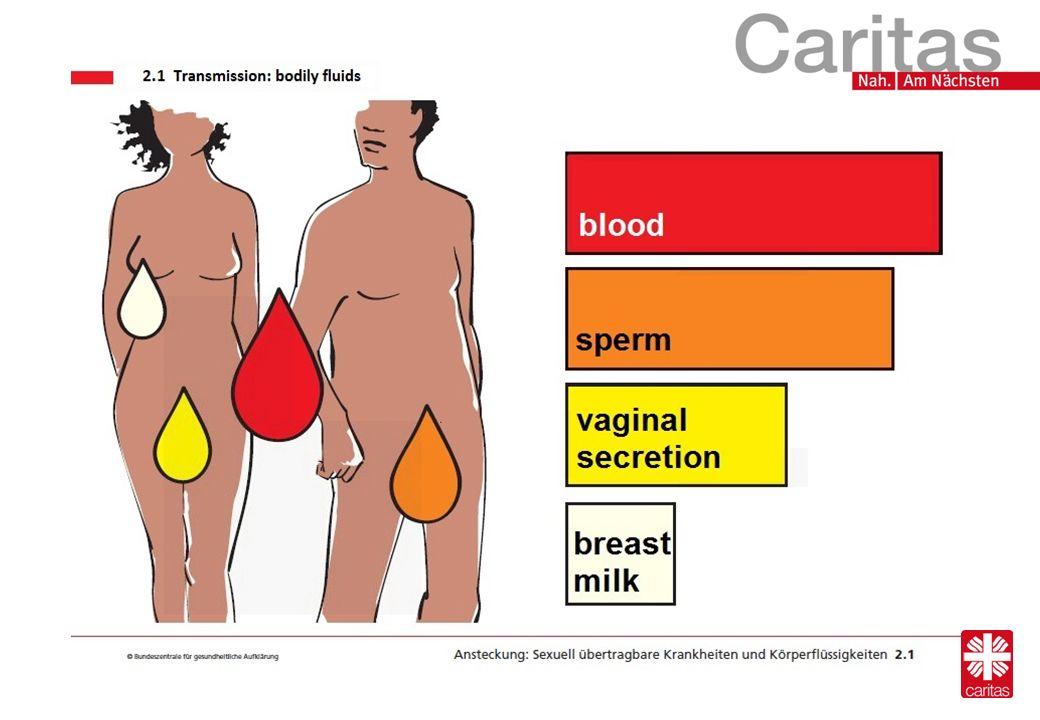protection -Condoms -Femidom Bild 1 Bild 2