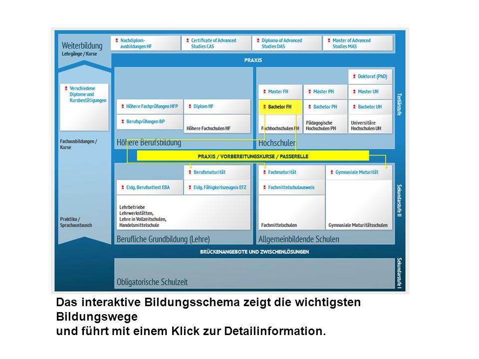 Das interaktive Bildungsschema zeigt die wichtigsten Bildungswege und führt mit einem Klick zur Detailinformation.