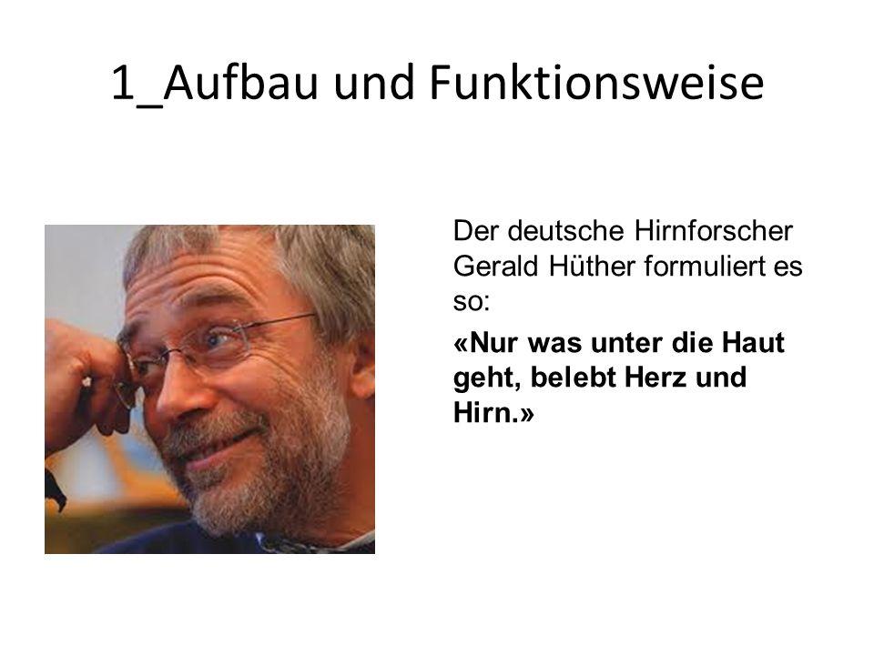 1_Aufbau und Funktionsweise Der deutsche Hirnforscher Gerald Hüther formuliert es so: «Nur was unter die Haut geht, belebt Herz und Hirn.»