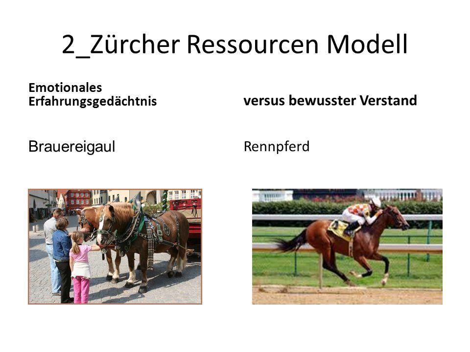 2_Zürcher Ressourcen Modell Emotionales Erfahrungsgedächtnis Brauereigaul versus bewusster Verstand Rennpferd
