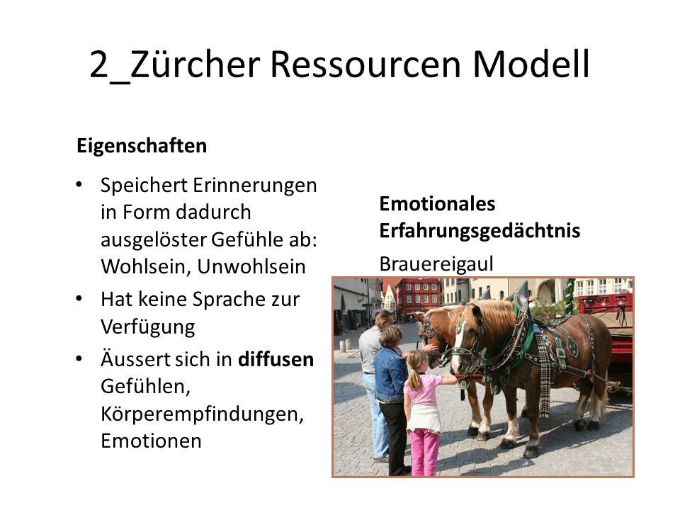 2_Zürcher Ressourcen Modell Eigenschaften Speichert Erinnerungen in Form dadurch ausgelöster Gefühle ab: Wohlsein, Unwohlsein Hat keine Sprache zur Verfügung Äussert sich in diffusen Gefühlen, Körperempfindungen, Emotionen Emotionales Erfahrungsgedächtnis Brauereigaul