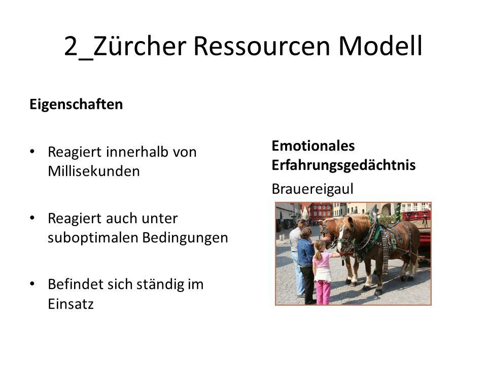 2_Zürcher Ressourcen Modell Eigenschaften Reagiert innerhalb von Millisekunden Reagiert auch unter suboptimalen Bedingungen Befindet sich ständig im Einsatz Emotionales Erfahrungsgedächtnis Brauereigaul