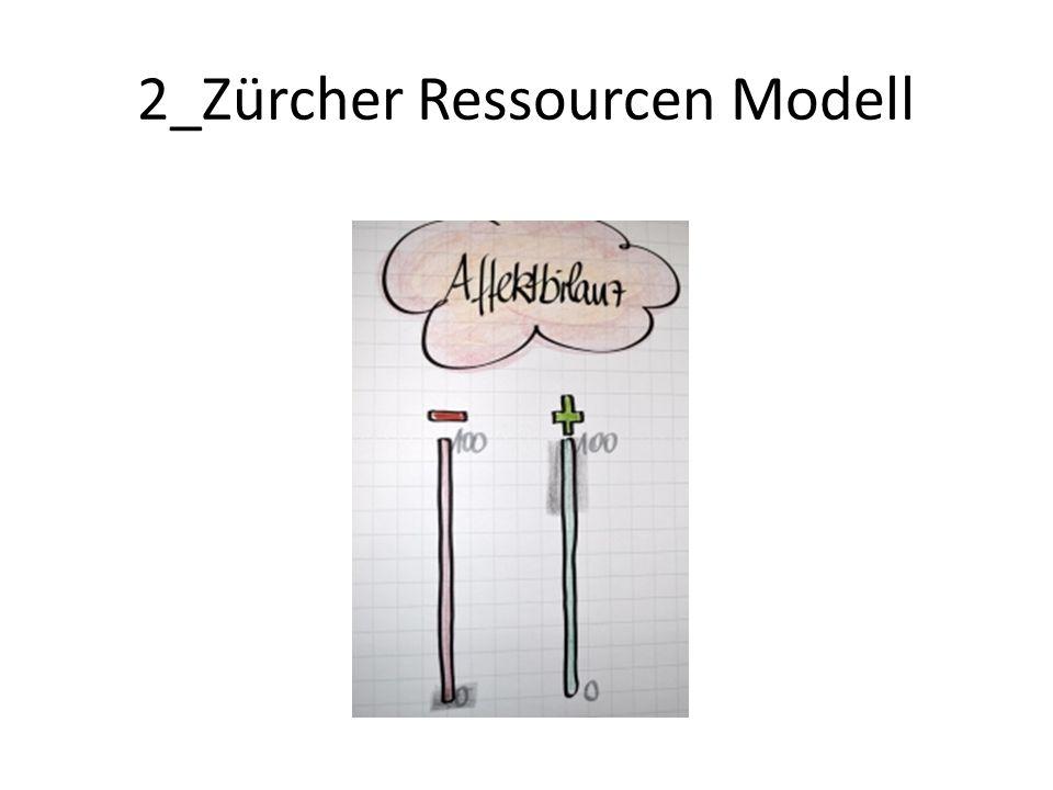 2_Zürcher Ressourcen Modell