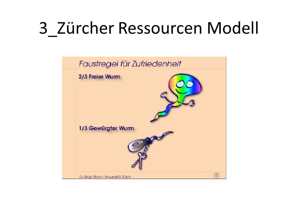 3_Zürcher Ressourcen Modell