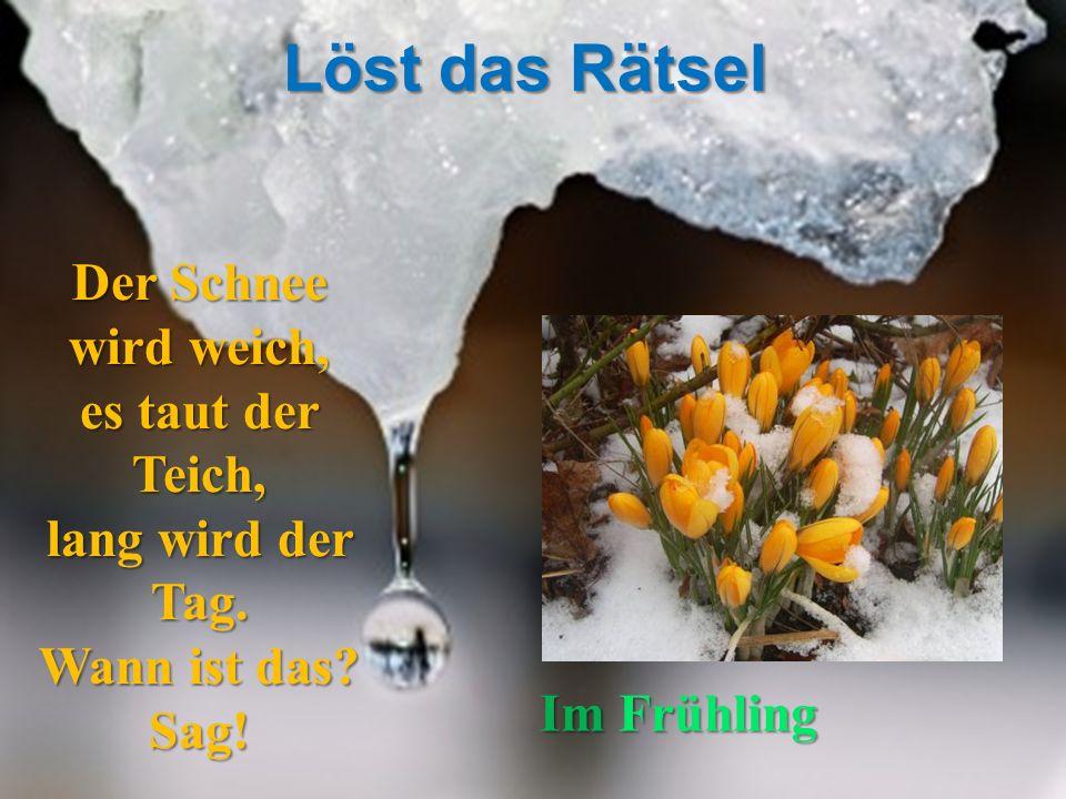 Der Schnee wird weich, es taut der Teich, lang wird der Tag. Wann ist das? Sag! ImFrühling Im Frühling Löst das Rätsel