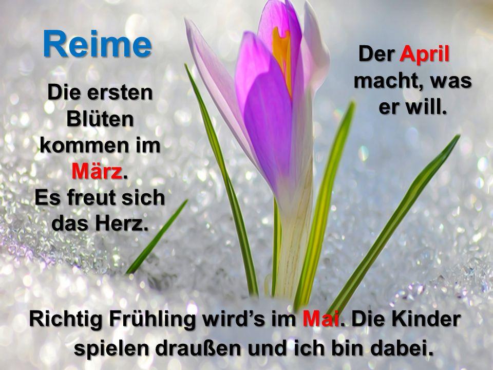 Die ersten Blüten kommen im März. Es freut sich das Herz. Der April macht, was er will. Richtig Frühling wird's im Mai. Die Kinder spielen draußen und