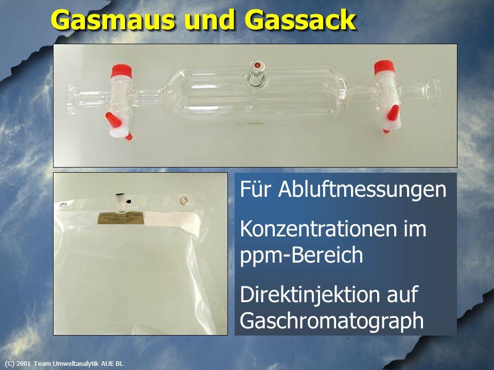(C) 2001 Team Umweltanalytik AUE BL Gasmaus und Gassack Für Abluftmessungen Konzentrationen im ppm-Bereich Direktinjektion auf Gaschromatograph