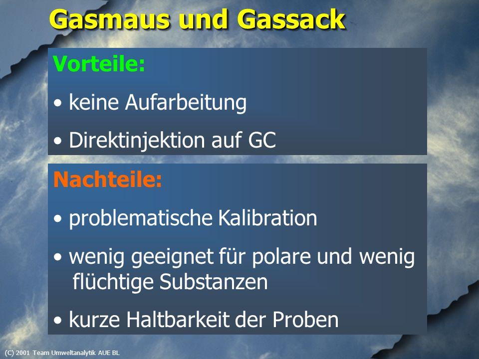 (C) 2001 Team Umweltanalytik AUE BL Gasmaus und Gassack Vorteile: keine Aufarbeitung Direktinjektion auf GC Nachteile: problematische Kalibration weni
