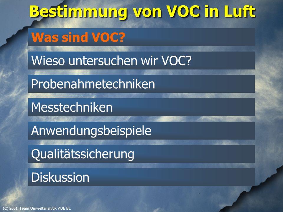 (C) 2001 Team Umweltanalytik AUE BL Was sind VOC.