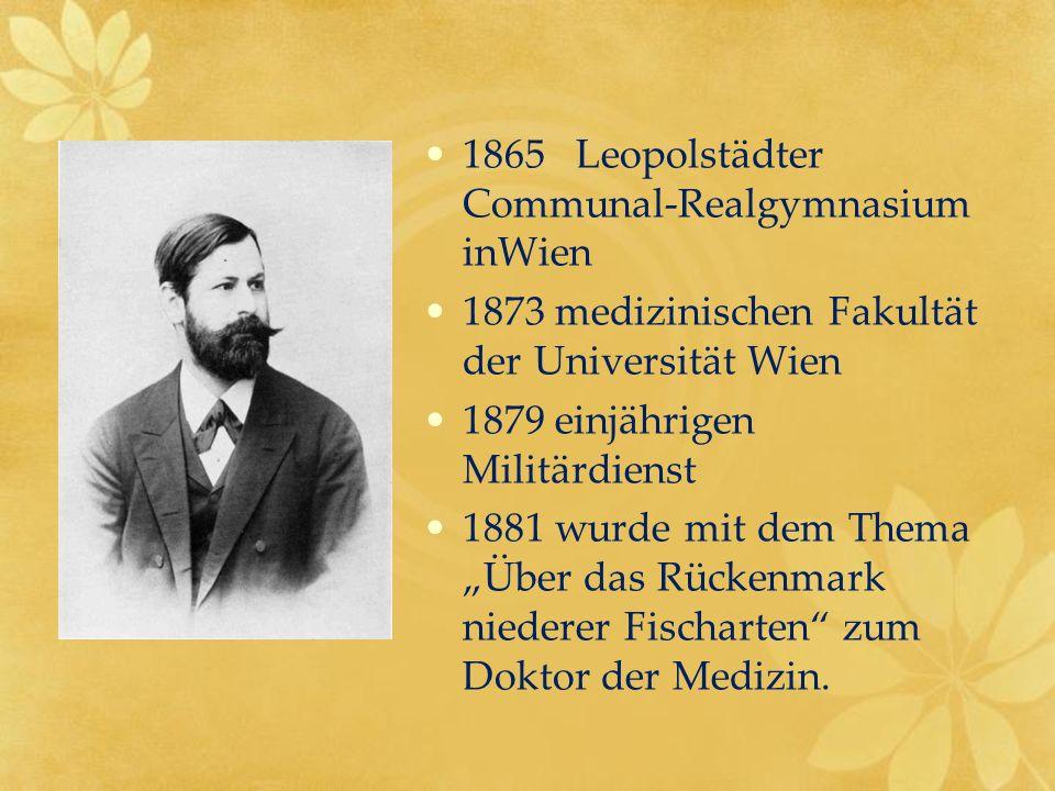 1865 Leopolstädter Communal-Realgymnasium inWien 1873 medizinischen Fakultät der Universität Wien 1879 einjährigen Militärdienst 1881 wurde mit dem Th