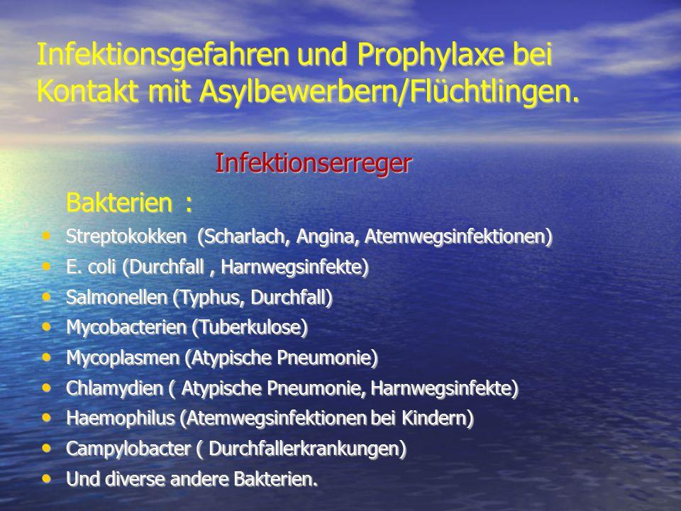 Infektionsgefahren und Prophylaxe bei Kontakt mit Asylbewerbern/Flüchtlingen. Infektionserreger Infektionserreger Bakterien : Bakterien : Streptokokke