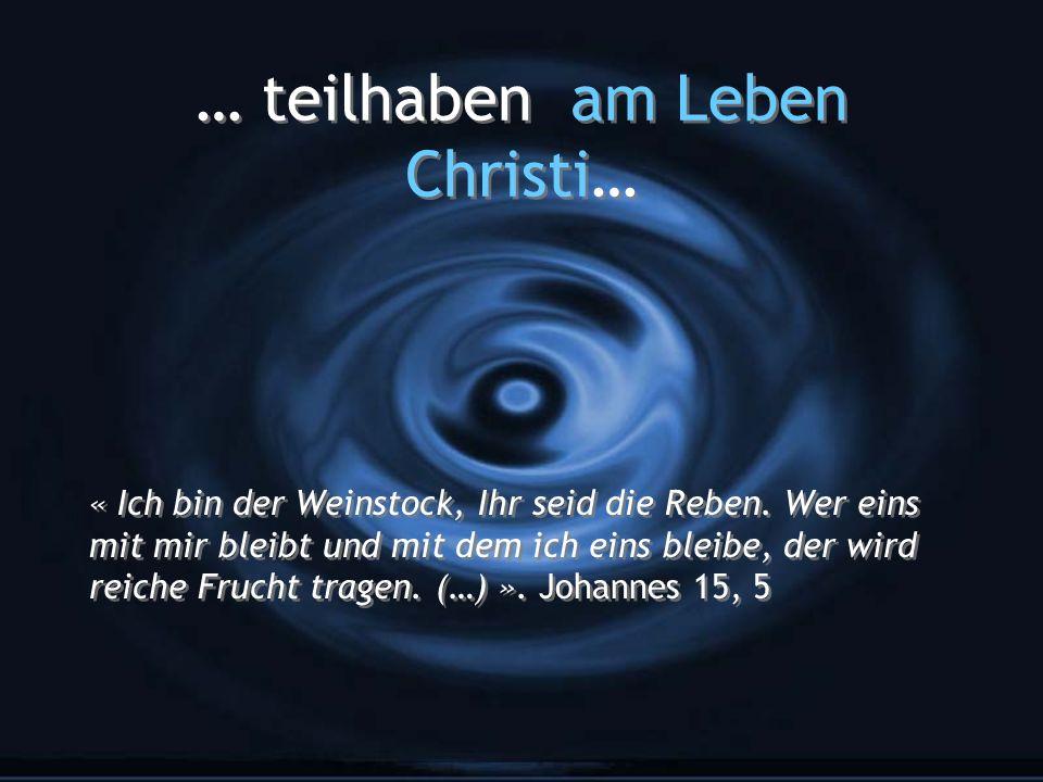… teilhaben am Leben Christi… « Ich bin der Weinstock, Ihr seid die Reben. Wer eins mit mir bleibt und mit dem ich eins bleibe, der wird reiche Frucht