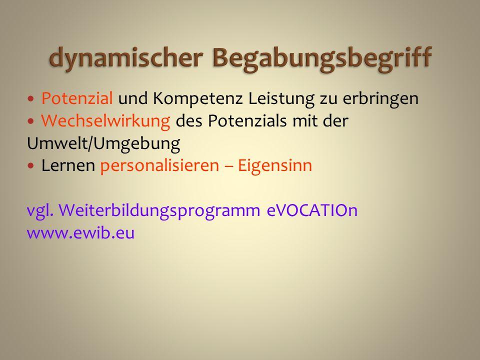 dynamischer Begabungsbegriff Potenzial und Kompetenz Leistung zu erbringen Wechselwirkung des Potenzials mit der Umwelt/Umgebung Lernen personalisiere