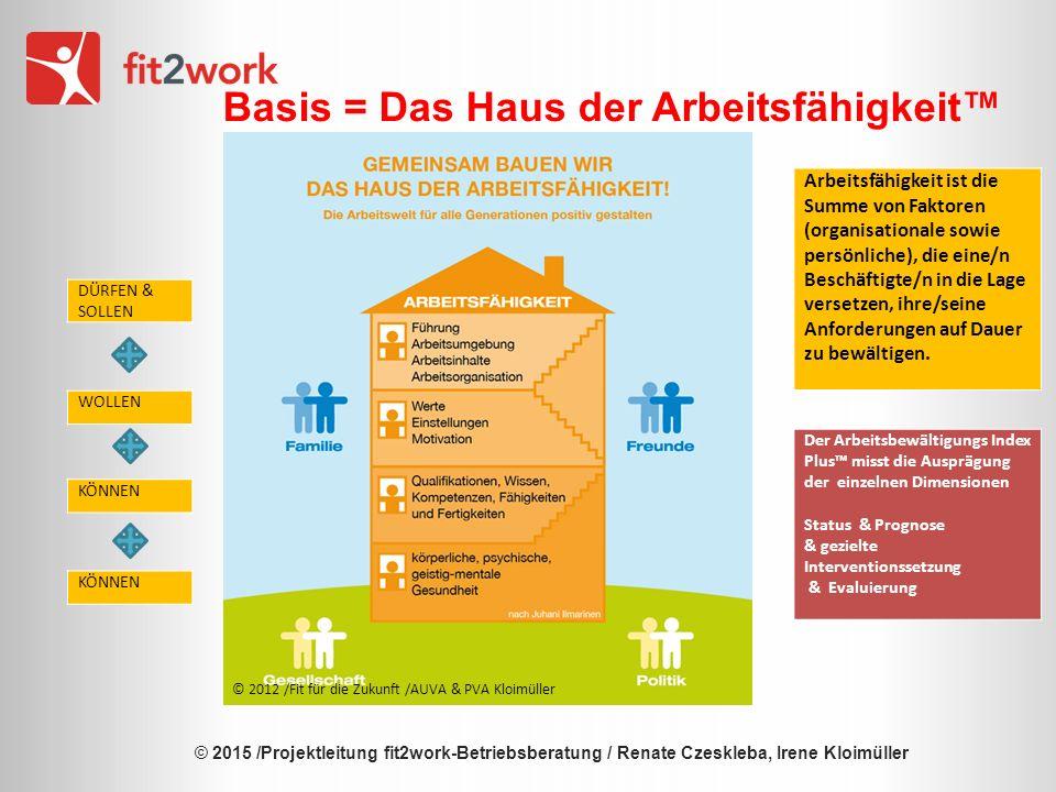 © 2015 /Projektleitung fit2work-Betriebsberatung / Renate Czeskleba, Irene Kloimüller Ist das Haus stabil.