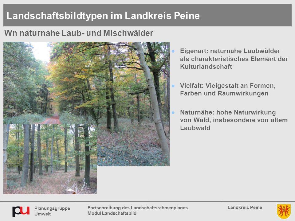 Planungsgruppe Umwelt Landkreis Peine Fortschreibung des Landschaftsrahmenplanes Modul Landschaftsbild ●Eigenart: naturnahe Laubwälder als charakteris