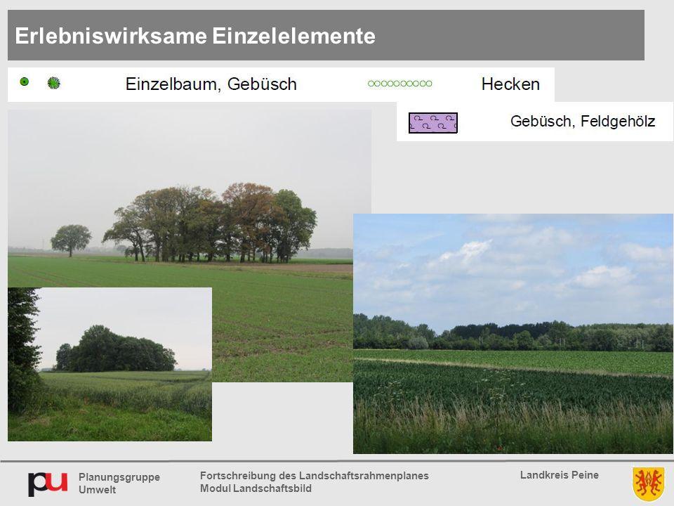 Planungsgruppe Umwelt Landkreis Peine Fortschreibung des Landschaftsrahmenplanes Modul Landschaftsbild Erlebniswirksame Einzelelemente