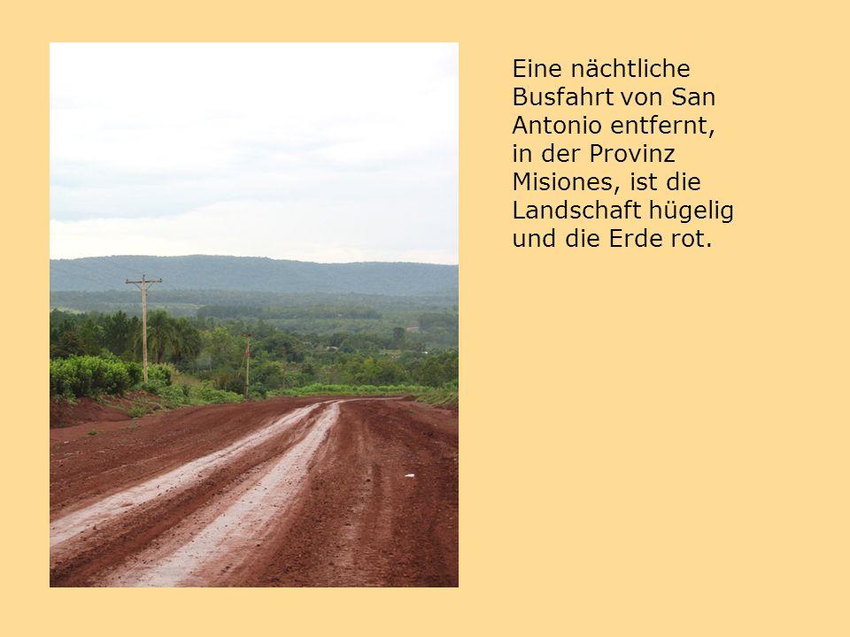 Eine nächtliche Busfahrt von San Antonio entfernt, in der Provinz Misiones, ist die Landschaft hügelig und die Erde rot.