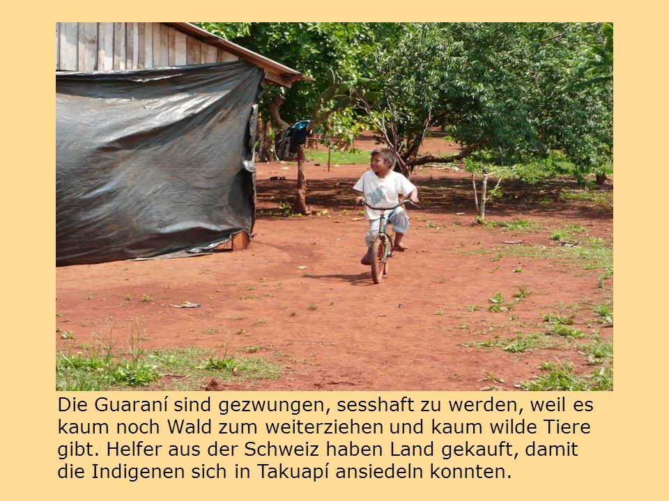 Die Guaraní sind gezwungen, sesshaft zu werden, weil es kaum noch Wald zum weiterziehen und kaum wilde Tiere gibt.