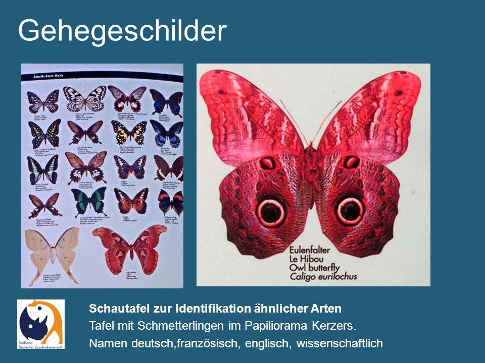 Gehegeschilder Viel Platz für aktuelle Informationen können mit Kreide eingetragen werden - Tierpark Bern, neu