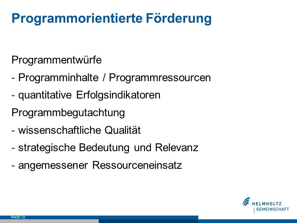 PAGE 12 Programmorientierte Förderung Programmentwürfe - Programminhalte / Programmressourcen - quantitative Erfolgsindikatoren Programmbegutachtung -