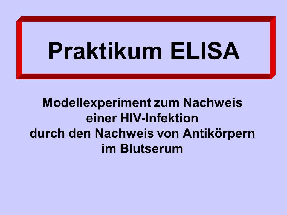 Praktikum ELISA Modellexperiment zum Nachweis einer HIV-Infektion durch den Nachweis von Antikörpern im Blutserum