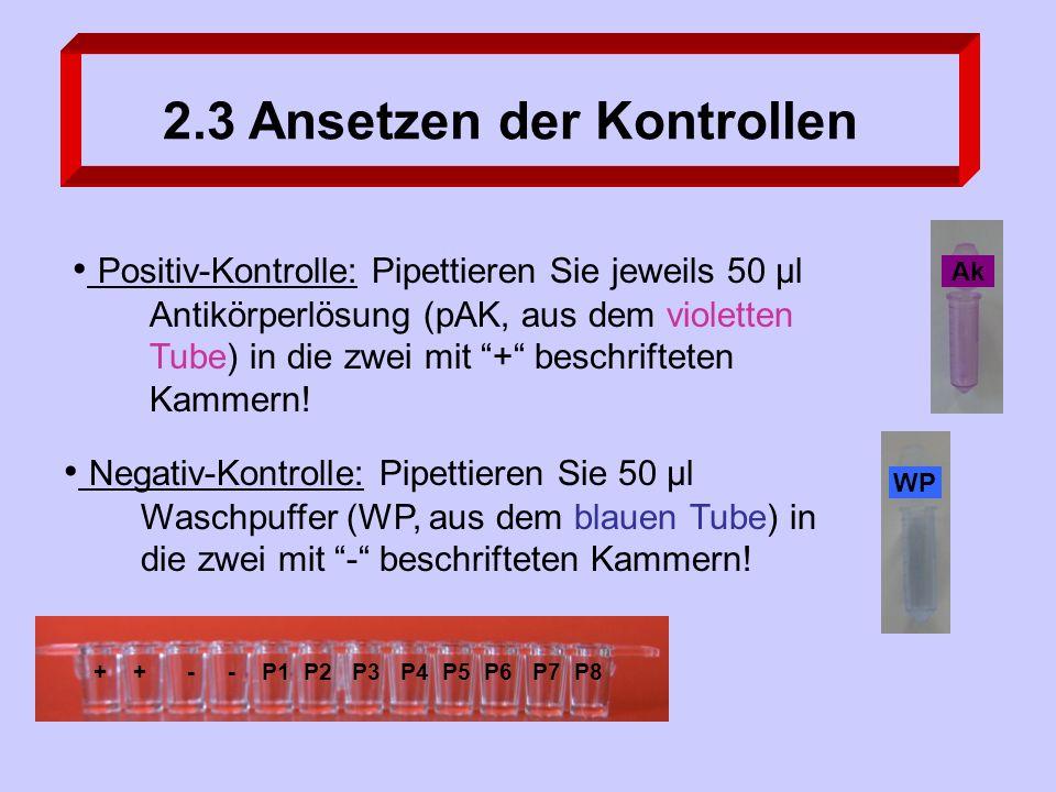 Positiv-Kontrolle: Pipettieren Sie jeweils 50 µl Antikörperlösung (pAK, aus dem violetten Tube) in die zwei mit + beschrifteten Kammern.