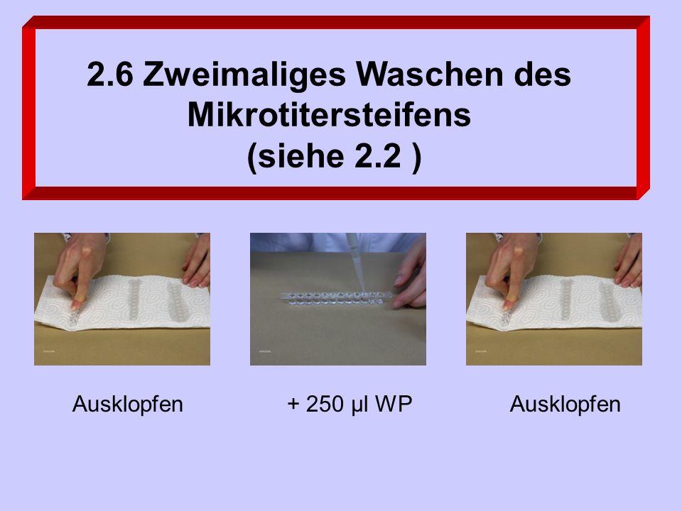 Ausklopfen+ 250 µl WPAusklopfen 2.6 Zweimaliges Waschen des Mikrotitersteifens (siehe 2.2 )