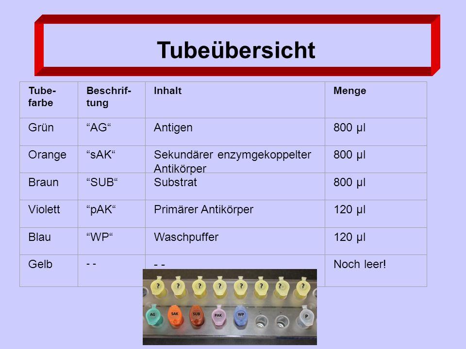 Tubeübersicht Tube- farbe Beschrif- tung InhaltMenge Grün AG Antigen800 µl Orange sAK Sekundärer enzymgekoppelter Antikörper 800 µl Braun SUB Substrat800 µl Violett pAK Primärer Antikörper120 µl Blau WP Waschpuffer120 µl Gelb - Noch leer!