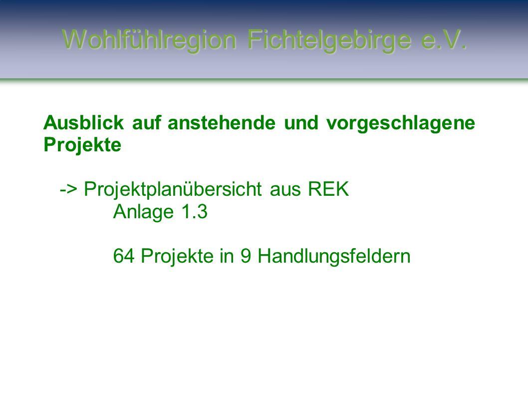 Ausblick auf anstehende und vorgeschlagene Projekte -> Projektplanübersicht aus REK Anlage 1.3 64 Projekte in 9 Handlungsfeldern Wohlfühlregion Fichte