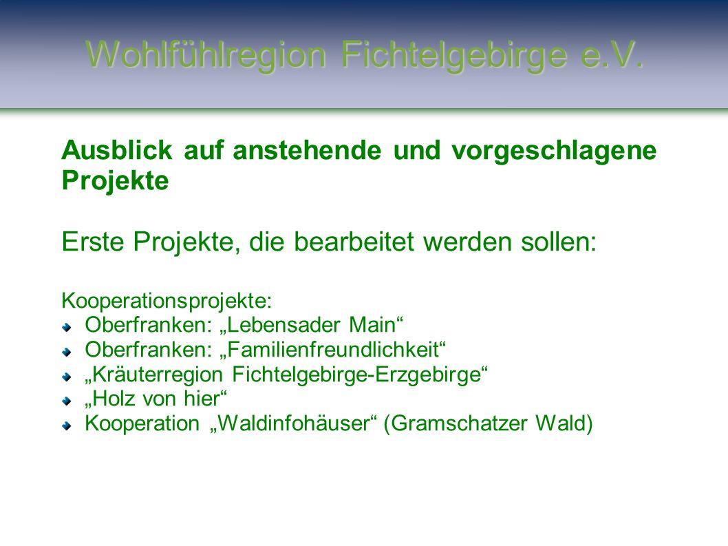 """Ausblick auf anstehende und vorgeschlagene Projekte Erste Projekte, die bearbeitet werden sollen: Kooperationsprojekte: Oberfranken: """"Lebensader Main"""""""