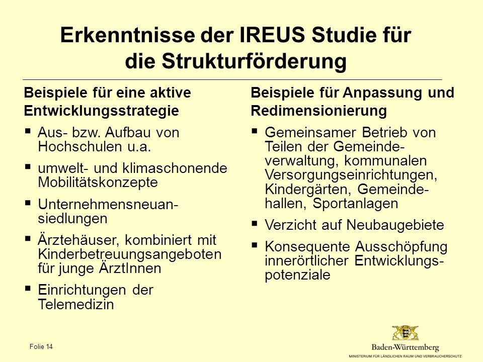 Erkenntnisse der IREUS Studie für die Strukturförderung Beispiele für eine aktive Entwicklungsstrategie  Aus- bzw.
