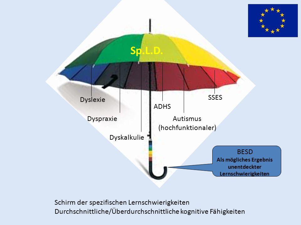 Schirm der spezifischen Lernschwierigkeiten Durchschnittliche/Überdurchschnittliche kognitive Fähigkeiten Dyslexie Dyspraxie Dyskalkulie ADHS SSES Autismus (hochfunktionaler) Sp.L.D.