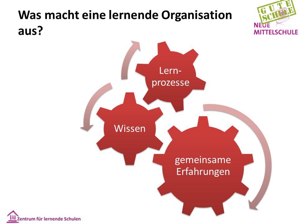 Was macht eine lernende Organisation aus? gemeinsame Erfahrungen Wissen Lern- prozesse