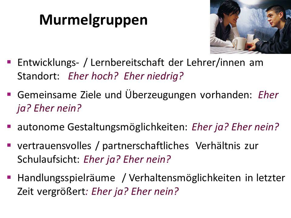 Murmelgruppen  Entwicklungs- / Lernbereitschaft der Lehrer/innen am Standort: Eher hoch.